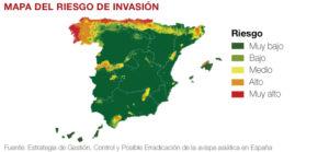 mapa-riesgo-avispa-asiatica-en-espana